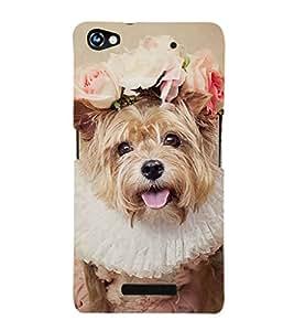 EPICCASE bride dog Mobile Back Case Cover For Micromax Canvas Hue 2 A316 (Designer Case)