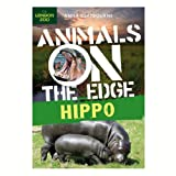 Hippo (Animals on the Edge)