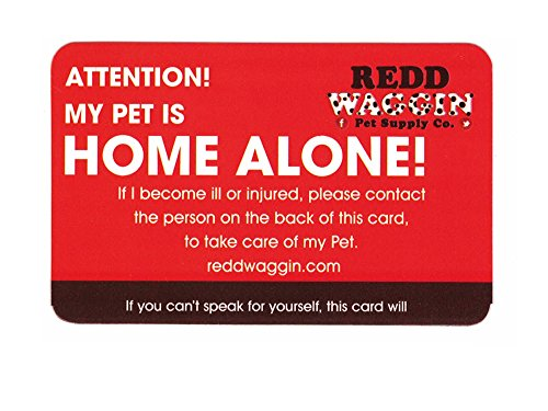 pet home alone key tag