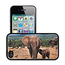 buy Luxlady Premium Apple Iphone 4 Iphone 4S Aluminum Backplate Bumper Snap Case Image Id 21431491 African Elephant With Baby