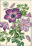 Creative Tops The Royal Botanic Gardens Kew Garden Delights Clematis Tea Towel, Multi-Colour