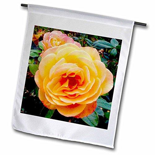 3drose-fl-120360-1-tropicana-rose-blossom-bandera-de-jardin-12-por-18-pulgadas