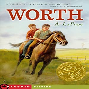 Worth Audiobook