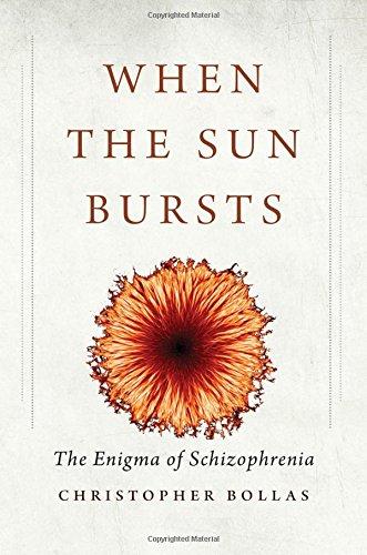 When the Sun Bursts: The Enigma of Schizophrenia