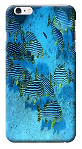 """Huahui Case / Cover Undersea World Beautiful Colorful Fishs Sunshine Special Design Cell Phone Cases For Iphone 6 (4.7"""") Hard Cases No.19"""
