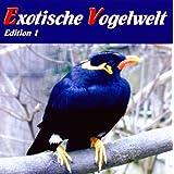Exotische Vogelwelt - Vogelstimmen aus aller Welt: Allfarblori, Ararauna, Beo, Bourkesittich, Diamanttäubchen,...