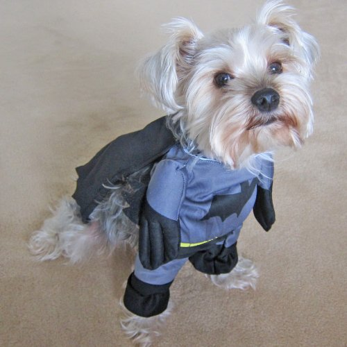 Alfie Pet by Petoga Couture - Superhero Costume Batman - Size: S