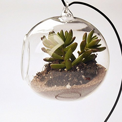 hanging-glass-plant-flower-vase-bauble-tea-light-candle-holder-clear-dia10cm