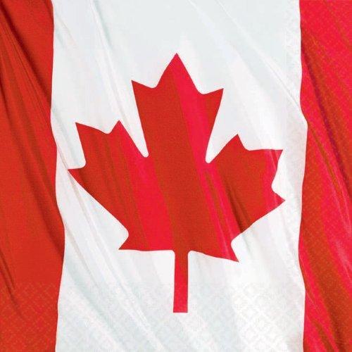 Online Stores, Inc. Canadian Beverage Napkins Package Of 30 - 1