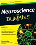 img - for Neuroscience For Dummies by Amthor, Frank (2012) Paperback book / textbook / text book