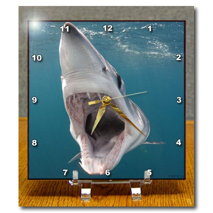 Dc_46335_1 Vwpics Sharks - Shortfin Mako Shark With Open Mouth, Isurus Oxyrinchus, San Diego, California, Usa, Eastern Pacific - Desk Clocks - 6X6 Desk Clock back-380897