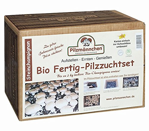bio steinchampignon pilzzuchtset im pilzzuchtkarton 5 kg ganzj hrig pilze selber z chten. Black Bedroom Furniture Sets. Home Design Ideas