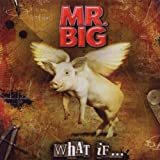 "What If...von ""Mr. Big"""
