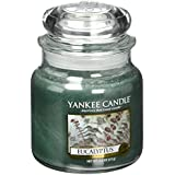Yankee Candle Company 1185965Z Jar Large Eucalyptus Candles, Green By Yankee Candle