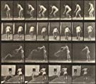 Woman emptying a pail of water, photo Eadweard Muybridge (V&A Custom Print)