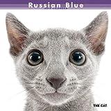 ロシアン・ブルー カレンダー 2014年