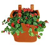 Pepper Agro Vertical Garden Wall Hanging (Terracotta, 5 Qty)