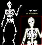 Halloween Deko-Skelett, nachtleuchtend, 1,50 m hoch, Halloween, Mottoparty, Horror, Deko