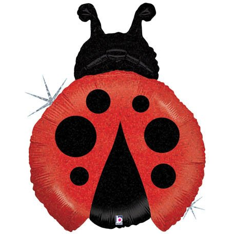 Betallic 85667 Little Ladybug Shop Foil Balloon Flt, 27""