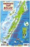 Ambergris Caye Belize Dive Map & Reef Creatures Guide Franko Maps Laminated Fish Card