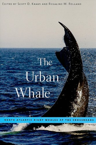 The Urban Whale: North Atlantic Right Whales at the Crossroads