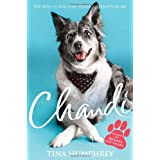 Chandi: The rescue dog who stole a nation's heartby Tina Humphrey