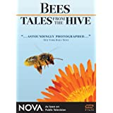 Bees: Tales from the Hiveby Nova