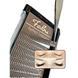 Fabu Eyelash Extensions Russian Volume 3D Fans, 0.10, C-curl, 12mm | 13mm | 14mm | 15mm (15mm)