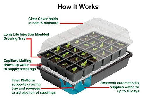 24-Cell-Self-Watering-Propagator