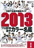 プロ野球選手カラー名鑑 2013―保存版 (NIKKAN SPORTS GRAPH)