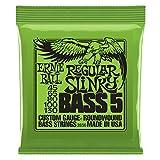 Ernie Ball Nickel Roundwound Slinky 5 String Regular 45-130 Bass String Set