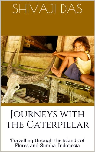 Book: Journeys with the caterpillar - Travelling through the islands of Flores and Sumba, Indonesia by Shivaji Das