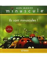 Ils sont minuscules ! : Insectes et autres petites bêtes