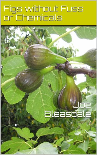Figs without Fuss or Chemicals by Joe Bleasdale
