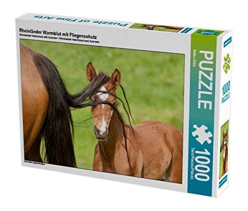 rheinlander-warmblut-mit-fliegenschutz-1000-teile-puzzle-quer-lustiges-pferdekind-calvendo-tiere