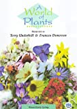 echange, troc A World of Plants - Winter and Early Spring [Import anglais]