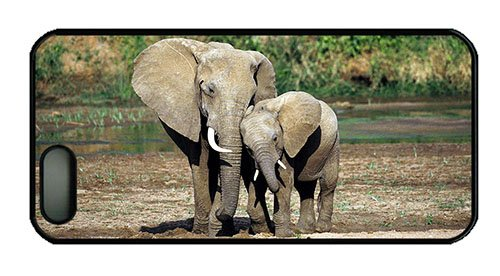Hipster Iphone 5 Cover Sale Elephant Mother Baby Pc Black For Apple Iphone 5/5S front-806613