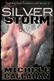 img - for Silver Storm (Timewalker Chronicles, Book 2) book / textbook / text book