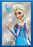 Disney's Frozen - Bar Mirror (Elsa) (Size: 9 x 12)