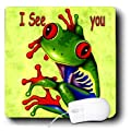 3dRose LLC 8 x 8 x 0.25 Inches Mouse Pad, Frog I See You (mp_1313_1)