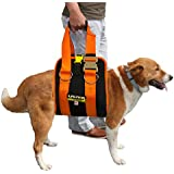 Fusion Pets X-Karimor Therapeutic Harness, 31 to 120-Pound