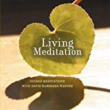 Living Meditation: Guided Meditations With David Harshada Wagner ~ Music for Deep Meditation