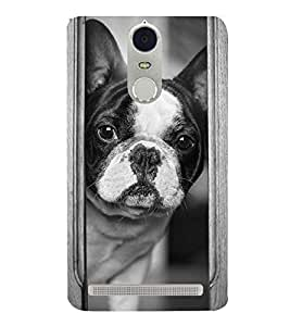 Cute Dog 3D Hard Polycarbonate Designer Back Case Cover for Lenovo K5 Note :: Lenovo Vibe K5 Note Pro