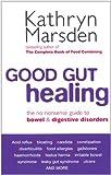 Good Gut Healing: The no-nonsense guide to bowel & digestive disorders (English Edition)