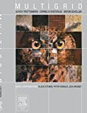 img - for Multigrid: Basics, Parallelism and Adaptivity by Ulrich Trottenberg (2000-11-20) book / textbook / text book
