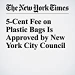 5-Cent Fee on Plastic Bags Is Approved by New York City Council | J. David Goodman