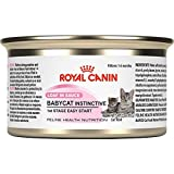 Royal Canin Canned Cat Food, Babycat Formula (Pack of 24 3-Ounce Cans)