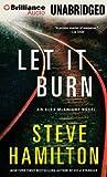 Let It Burn (Alex McKnight Series)
