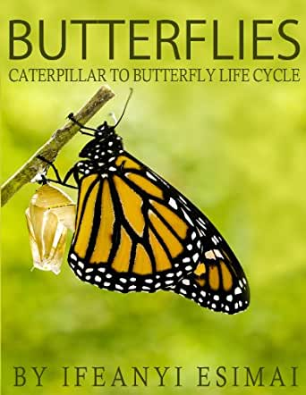 Butterflies: Butterfly Book for kids - Fun facts about ...
