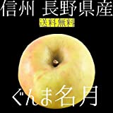 2016年期間限定 長野県産 ぐんま名月 3kg